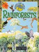 Go to record Rainforests