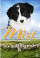 Go to record Mist the tale of a sheepdog puppy.