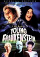 Go to record Young Frankenstein